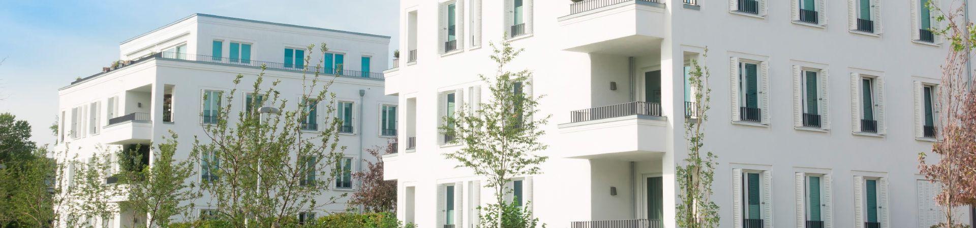 Experte für Haus- und Grundstücksverwaltung